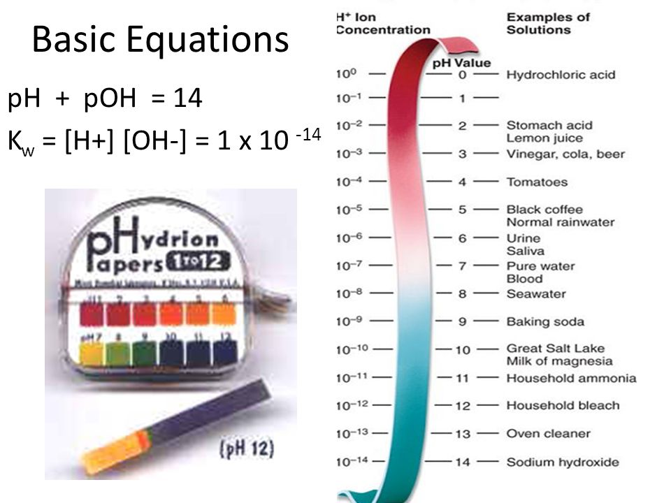Basic Equations pH + pOH = 14 Kw = [H+] [OH-] = 1 x 10 -14